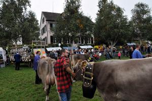 Viehschau u. Herbstmärt Herrliberg